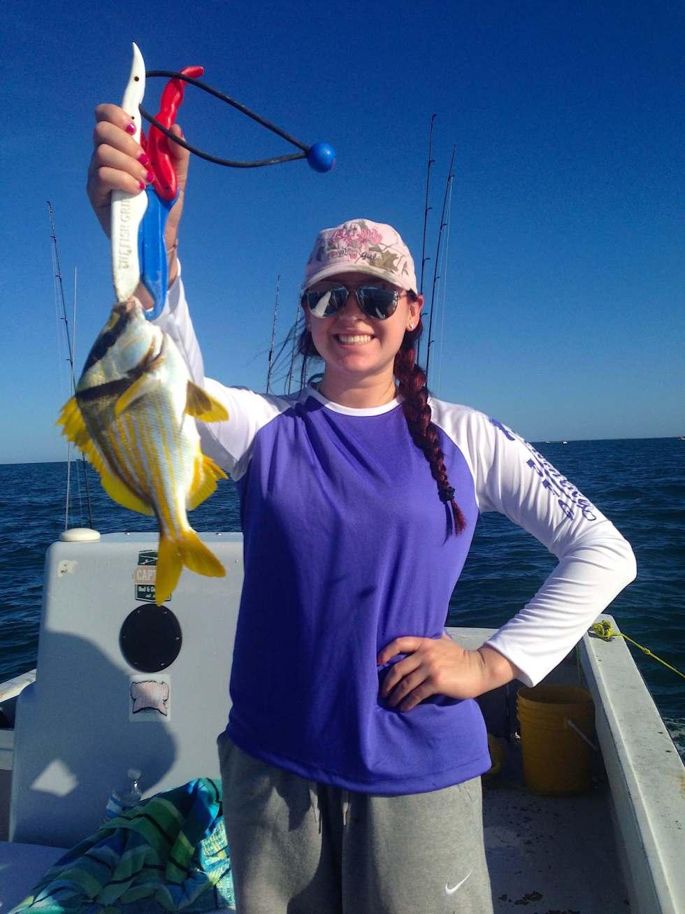 Porkfish, Offshore, Sanibel Fishing & Captiva Fishing, Sanibel Island, Sunday, November 27, 2016.