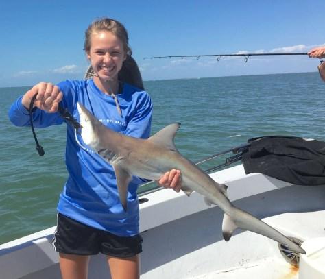 Blacktip Sharks, Catch & Release, Sanibel Fishing & Captiva Fishing, Sanibel Island, Wednesday, March 29, 2017.