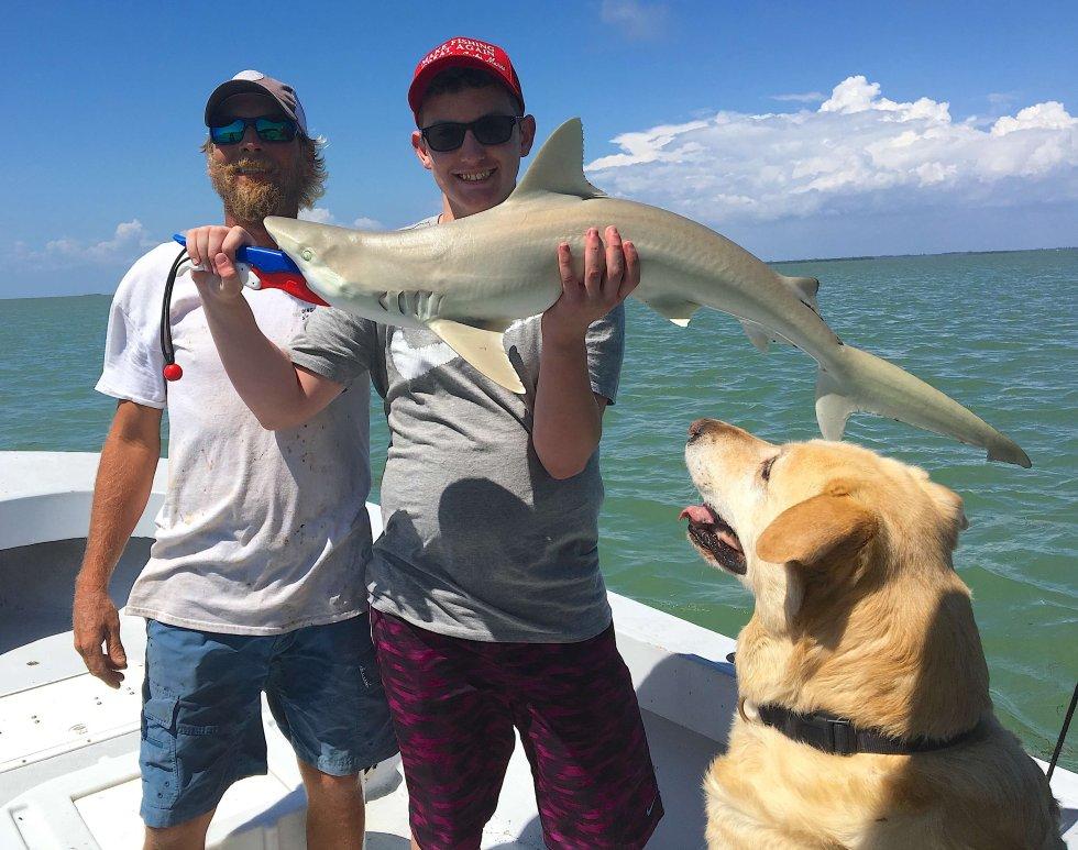Blacknose Shark, Catch & Release, Sanibel Fishing & Captiva Fishing, Sanibel Island, Thursday, May 25, 2017.
