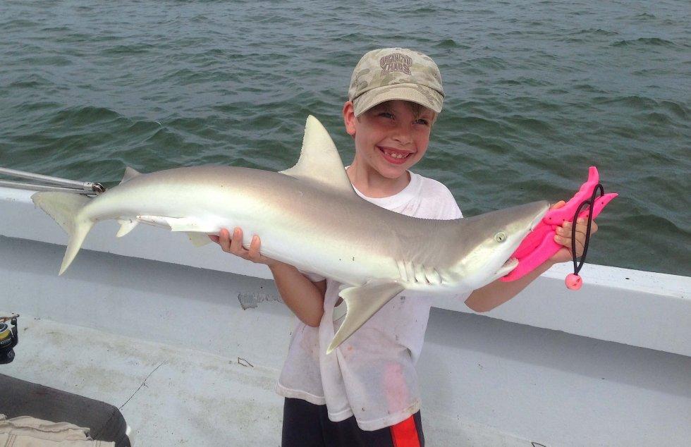 Sharks Stealing The Tarpon Bait, Xander, Catch & Release, Sanibel Fishing & Captiva Fishing, Sanibel Island, Friday, June 16, 2017.