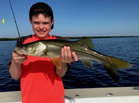 Snook, Oyster Bars, Catch & Release, Sanibel Fishing & Captiva Fishing, Sanibel Island, Friday, September 29, 2017.