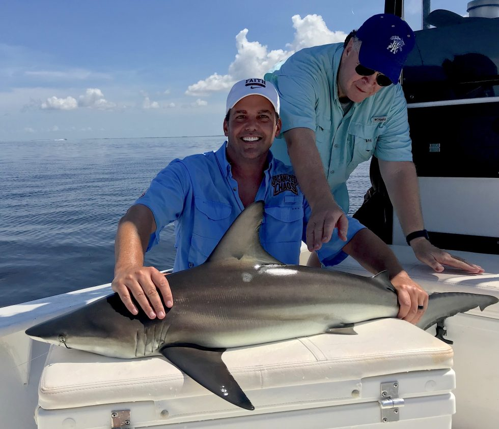 Blacktip Shark, Catch & Release, Sanibel Island Fishing Charters & Captiva Island Fishing Charters, Sanibel Island, Tuesday, July 3, 2018.