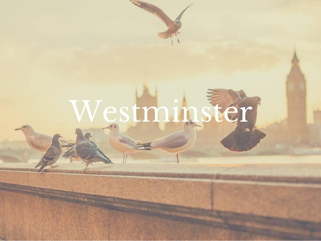 London Neighborhoods you should visit Westminster.