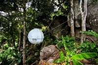 Cocoon Tree Tent: Luxury Bed in a Tree - Captivatist