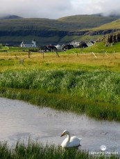 faroe_islands-1