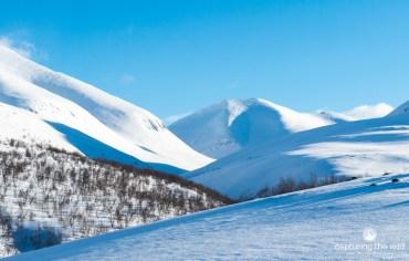 snowcaped