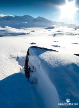 snowflare
