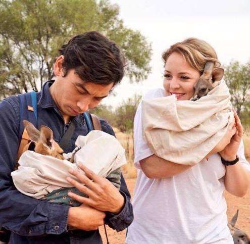 sanctuaire kangourous alice springs 6