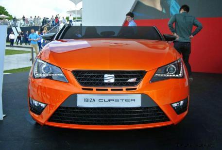 2014 SEAT Ibiza CUPSTER 8