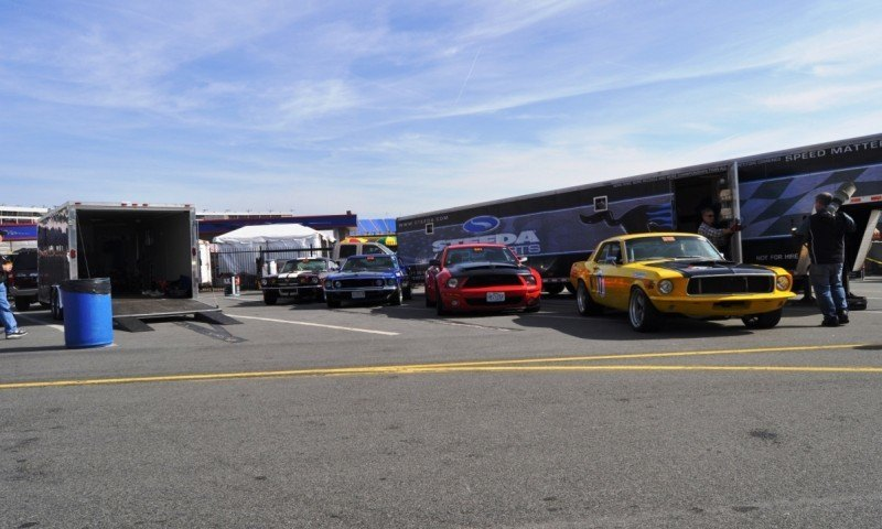 Mustang 50th Anniversary - Stragglers Gallery Shows 150 Great Photos of Your Dream Mustangs 52