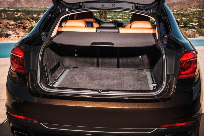 2015 BMW X6 xDrive50i INTERIOR 20