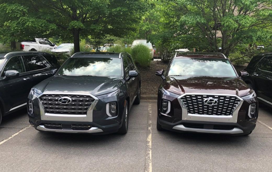 2020 Hyundai Palisade at Biltmore Estate (7)