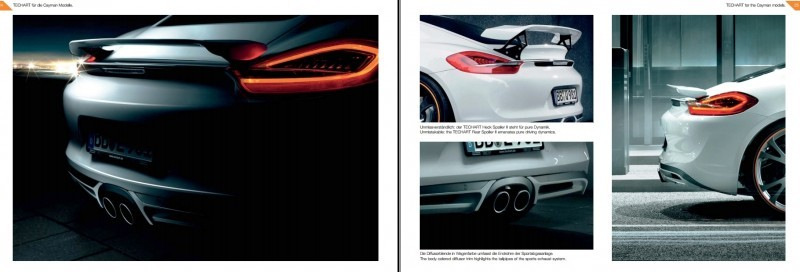 TECHART for Porsche Boxster and Cayman 4