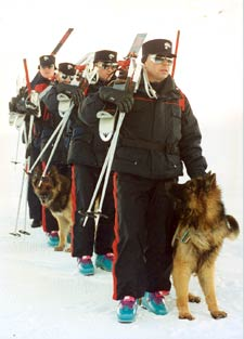 Carabinieri sciatori con cani addestrati per il recupero di dispersi sotto la neve.