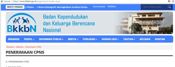 Pengumuman SKD CPNS BKKBN 2021