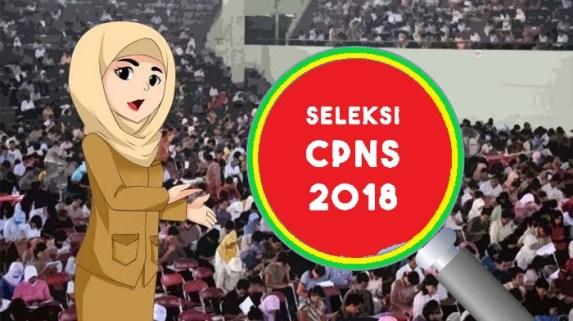 2 Formasi Paling Beruntung di CPNS 2018, Selain Guru dan Perawat, Pendaftaran Sebentar Lagi
