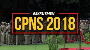 Petunjuk Cara Daftar CPNS 2018 Lulusan SMA D3 S1 Provinsi Jawa Timur