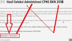 hasil seleksi administrasi cpns bkn 2018