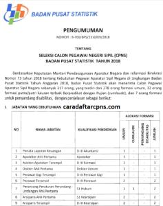 Pengumuman Hasil SKB CPNS BPS Formasi 2019