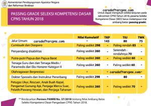 Passing Grade Ujian Seleksi Kompetensi Dasar SKD CPNS 2018