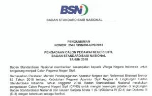 Pengumuman Hasil Tes Kompetensi Dasar SKD CPNS BSN 2018