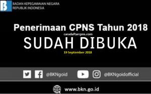 Formasi CPNS 2018 PDF Kemenkes Kementerian Kesehatan