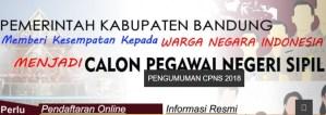 Hasil Akhir Seleksi CPNS Kabupaten Bandung 2018