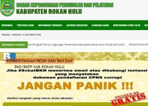 Hasil Akhir Seleksi Administrasi CPNS Kabupaten Rokan Hulu 2018