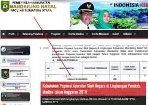 Pengumuman Hasil Tes SKD CPNS Kabupaten Mandailing Natal 2018