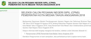 Hasil Akhir Seleksi CPNS Kota Medan 2018