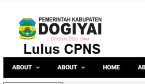 Pengumuman Hasil SKD SKB CPNS Kab Dogiyai 2019 2020