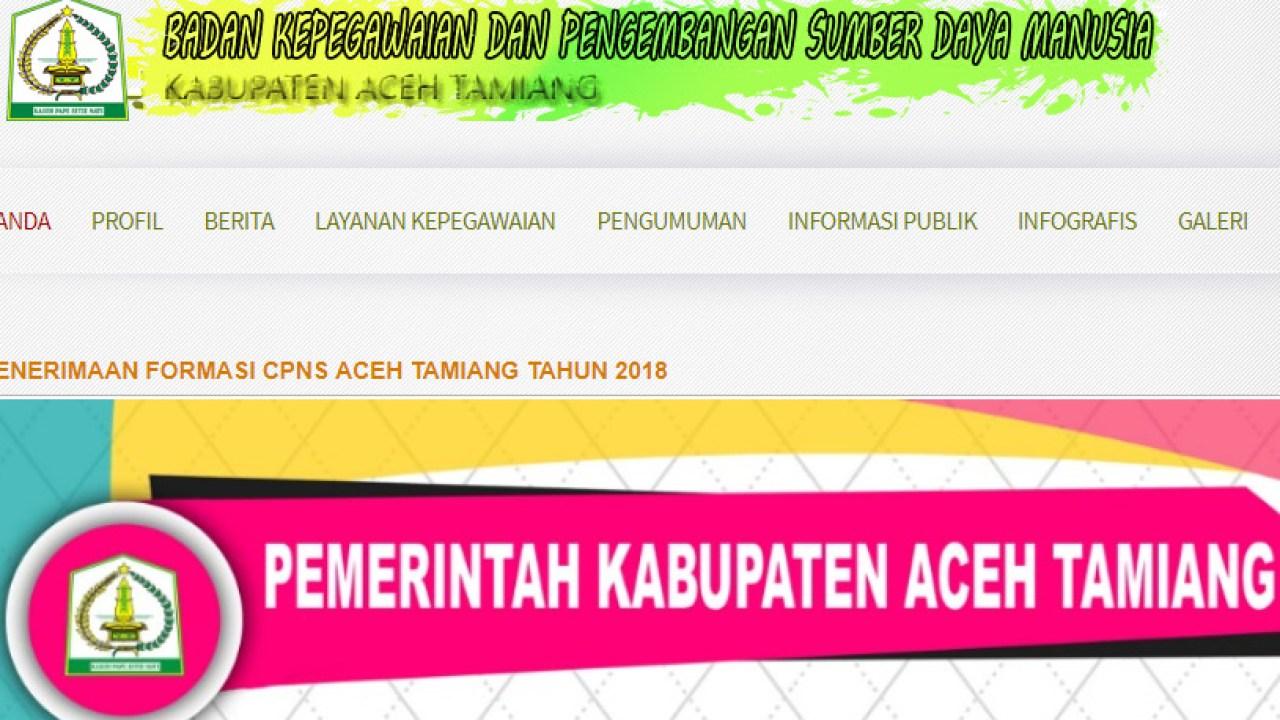 Pengumuman Hasil Tes Skd Cpns Kabupaten Aceh Tamiang 2018