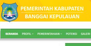 Pengumuman Hasil Tes CAT SKD CPNS Kabupaten Banggai Kepulauan 2018