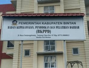 Pengumuman Hasil Tes SKD CPNS Kabupaten Bintan 2018