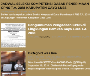 Pengumuman Hasil Tes SKD CPNS Kabupaten Gayo Lues 2018