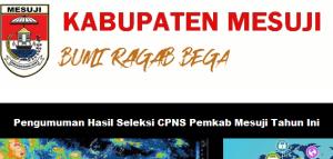 Pengumuman Hasil Tes SKD CPNS Kabupaten Mesuji 2018