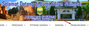 Pengumuman Hasil Tes SKD CPNS Kabupaten Muaro Jambi 2018
