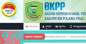 Pengumuman Hasil Tes CAT SKD CPNS Kabupaten Pulang Pisau 2018