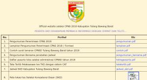 Pengumuman Hasil Tes SKD CPNS Kabupaten Tulang Bawang Barat 2018