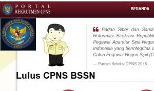 Hasil Akhir Tes SKB CPNS BSSN 2018 Lulus Wawancara Psikotes