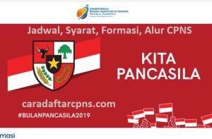 Pengumuman Hasil SKB CPNS BUMN Formasi 2019