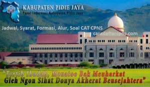 CPNS 2019 Kabupaten Pidie Jaya