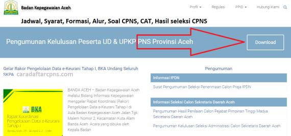 Hasil Seleksi Administrasi CPNS Pemprov Aceh 2021