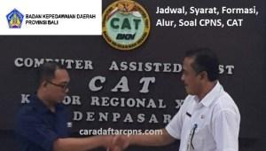 Pengumuman Hasil SKB CPNS Pemprov Bali Formasi 2019