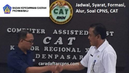 Hasil Seleksi Administrasi CPNS Pemprov Bali 2021
