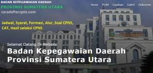 Pengumuman Hasil SKB CPNS Pemprov Sumut Formasi 2019