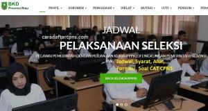 Pengumuman Hasil SKB CPNS Pemprov Riau Formasi 2019