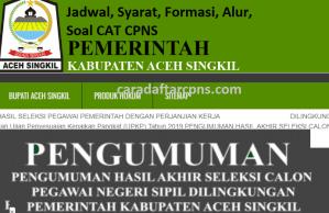 CPNS 2019 Kabupaten Aceh Singkil