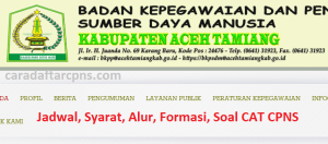 CPNS 2019 Kabupaten Aceh Tamiang