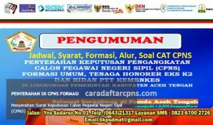 Jadwal Pendaftaran CPNS Kabupaten Aceh 2021 Lulusan SMA SMK D3 S1 S2
